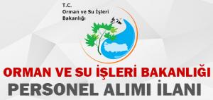 Orman Genel Müdürlüğü 2015-2016 Personel Alımı