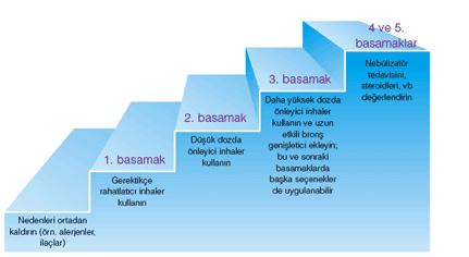 astim-tedavi-basamakları