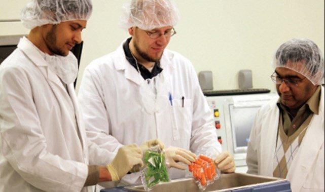 Gıda Mühendisi Maaşları, Gıda Mühendisi Nasıl Olunur?