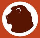 zeynep-turan-aslan-2017-burc-yorumlari