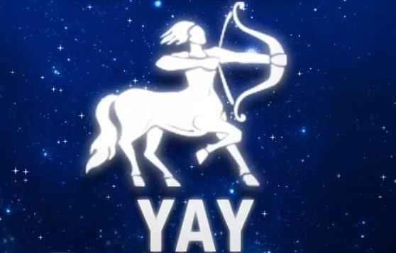 su-karakus-2017-yay-burcu-yorumlari